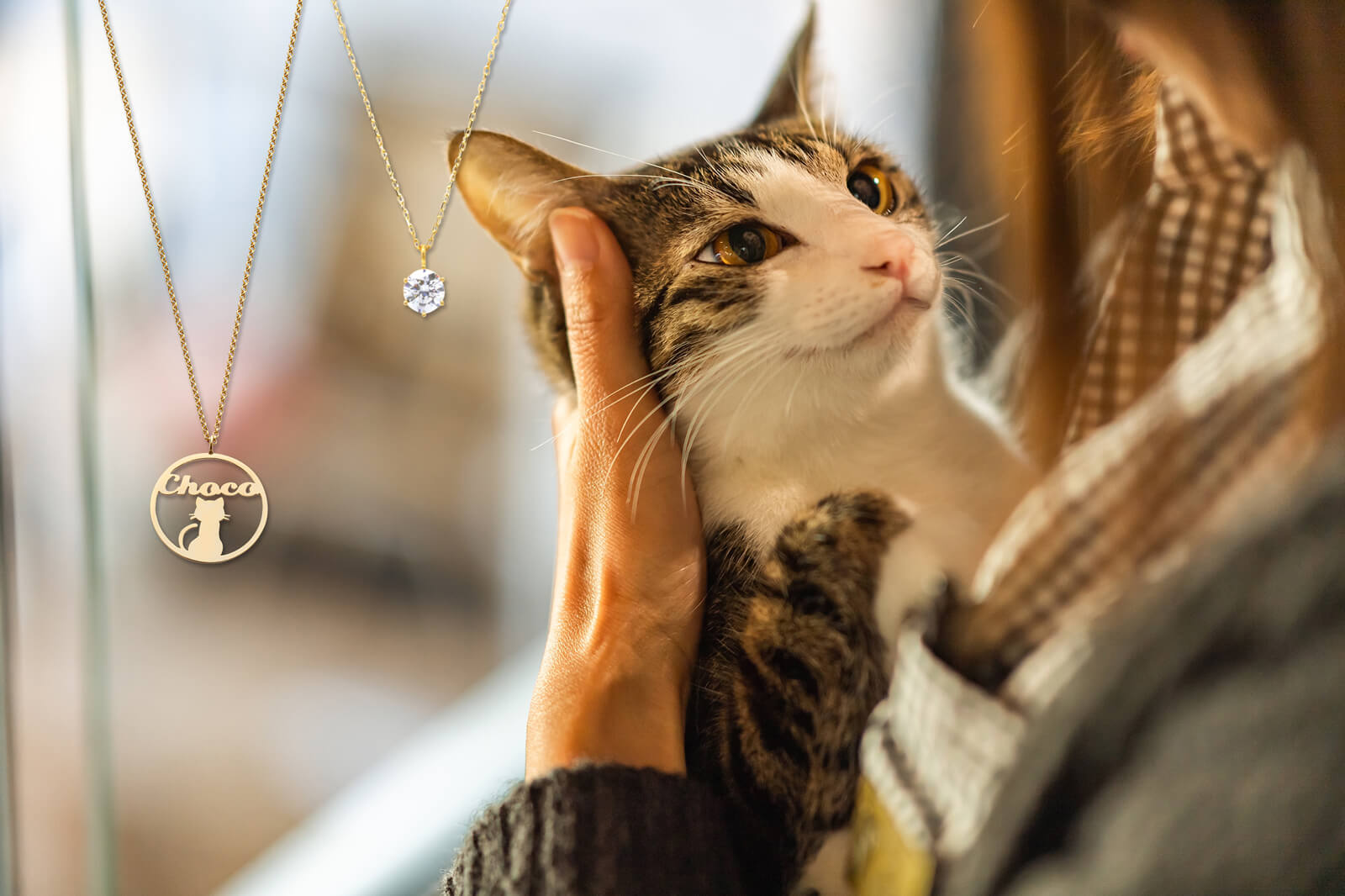 ジュエリー×猫助け